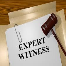 Expert Witness brv.com.au